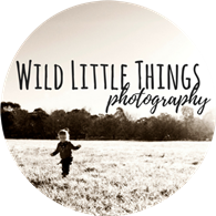 Wild Little Things Photography